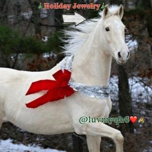 🎄HOLIDAY JEWELRY SETS🎄
